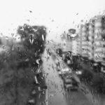 rainy day thru the window